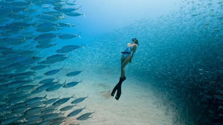 Freediver Chelsea Yamasee