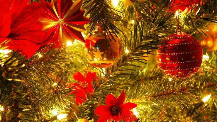 Christmas Present idea Membership at Brighton Dome