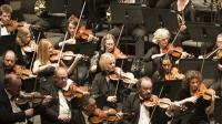 Brighton Philharmonic Orchestra at Brighton Dome Concert Hall