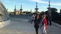 Patrons rooftop tour