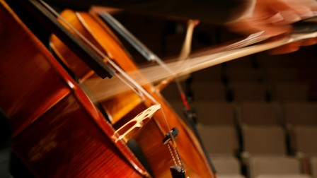 Close up photo of two Cellos being played