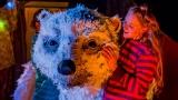 The Bear at Brighton Dome